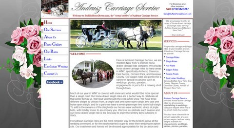 Andrusz Carriage Website Design